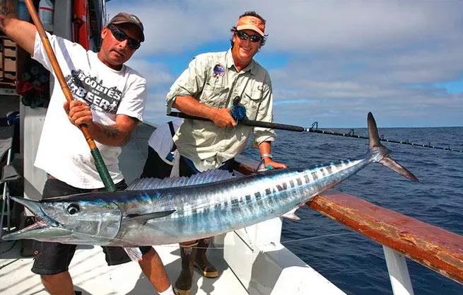 Monofil teikoteflon Red Special Fishing Reel Casting Sea Fishing